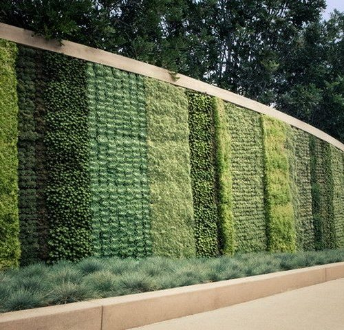 Contemporary-Green-Vertical-Garden-Landscape