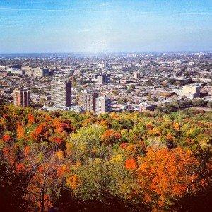 Fall on Mount Royal