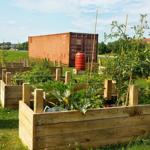 Sustainable Urban Farming Montreal